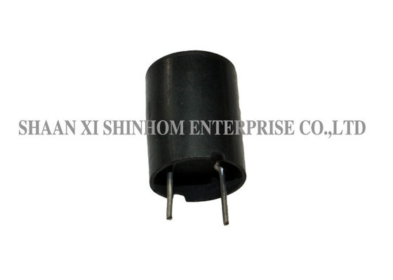 Unshielded Choke Through Hole DIP Inductor Plastic Case Water Proof Structure